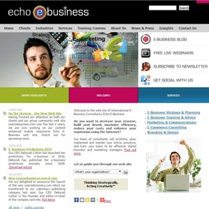 Echo E-Business Corporate Web Site
